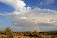 Classic isolated monsoon downpour